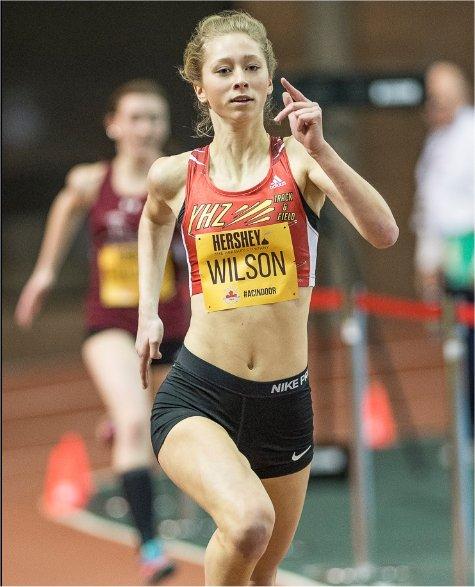 Wilson Bronze!